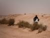Amazing_Tunisia-36