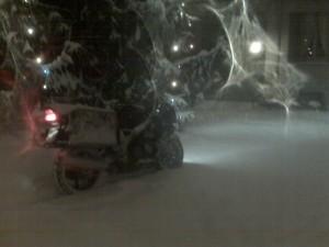 CBR sotto l'albero